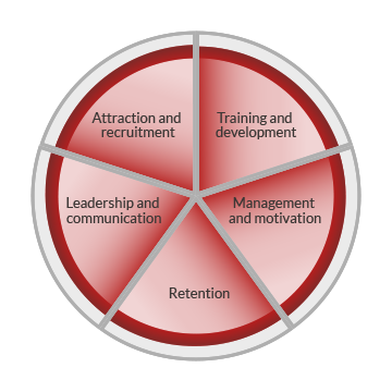 A circle or pie chart graphic representing workforce development. The circle is divided into five segments, indicating five core areas of workforce development. These are labelled as attraction and recruitment, training and development, management and motivation, retention and leadership and communication.