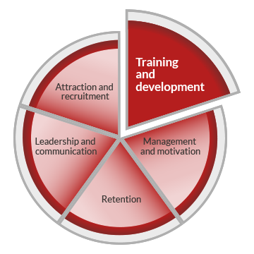 A pie chart graphic representing workforce development. The circle is divided into five segments, indicating five core areas of workforce development. These are labelled as attraction and recruitment, training and development, management and motivation, retention and leadership and communication. The training and development segment is highlighted.